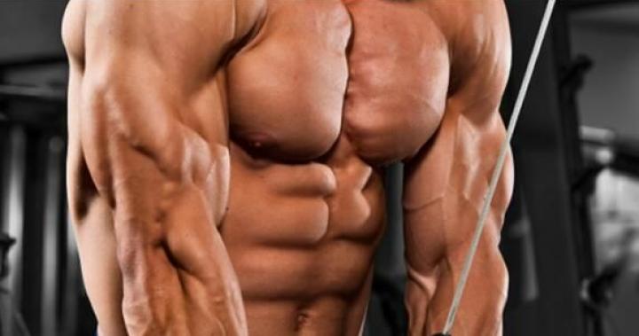 [訓練介紹] 三頭肌CABLE屈臂下壓動作圖解   健身筆記