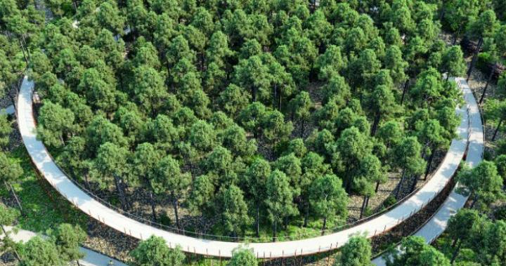 荷蘭「自行車建築雙年展」精選!水岸邊、森林裡、空中任你騎! - MOT TIMES 明日誌
